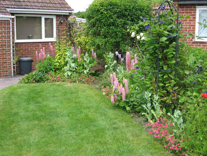 Low maintenance front gardens for Garden planting ideas uk
